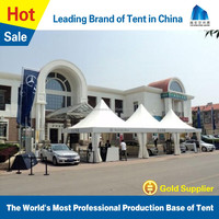 Lower energy losses 2 car parking canopy tent