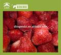 precio de la fresa congelada