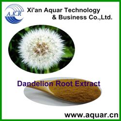 Fresh stock for Dandelion Root Extract 10:1,4% Flavones/ Taraxacum officinale