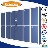 Logistic Intelligent Storage Lockers/Electronic Safe Luggage Parcel Locker