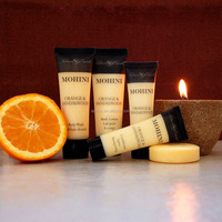 30ml Beautiful Hotel Shampoo Tube Mini Hotel Amenity Sets