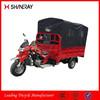 Three Wheel Motorbike/250Cc Motorized Big Wheel Tricycle/Three Wheel Cargo Bike