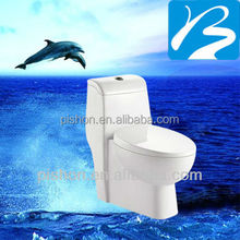 Bathroom One Piece Toilet