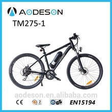 ce en15194 approved electric bike/mountain electric bicycle