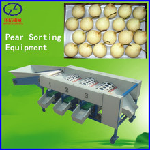 Fruit Processing Machine Size Sorting Tool