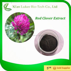 Professional Manufacturer Factory Steadily Supply Red Clover Extract Powder Isoflavones 8%,20%,40%