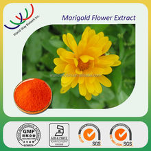 free sample 100% natural HACCP KOSHER FDA marigold extract,HPLC 10%~95% lutein Tagetes erecta L.