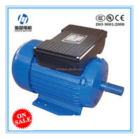 YL/ YY/ YC series aluminum housing 2.5hp outboard motor electric car wheel motor electric motor car