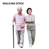 2015 new style old man walking cane
