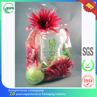 Hot selling transparent gift carrying cello plastic bag for decoration