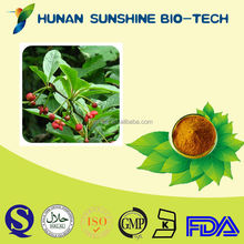 Schisandra Chinensis Extract/Powder Form And Herbal Extract/Liver Protection And Anti-aging