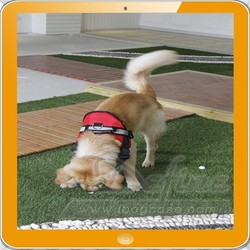 2015 Good Quality Large Dog Harness Collar Training use