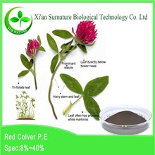 2015 new arrival red clover extract