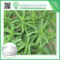 Natural herbal medicine Stevia Leaf Extract stevioside 92% with low price