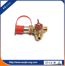 cng/gnv kit gas precharge valve NGV1