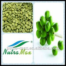 Active ingredients :Chlorogenic acid / Green coffee bean p.e.(by HPLC)