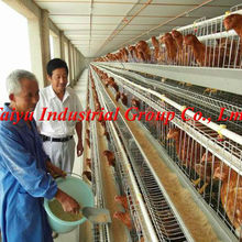 Taiyu full automatic equipments farming