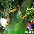 Parque temático los animales de la simulación-serpiente