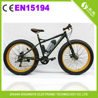 EN15194 approval electrical bicycle with battery for man/woman A7