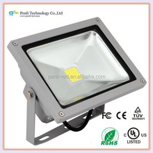 looking for distributor europe, Cool White high power ip65 waterproof 20w 220v outdoor led garden light