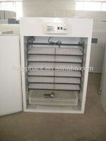 Cheap egg incubator for sale