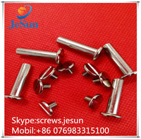 Dongguan fastener manufacturer offering all kinds of screws