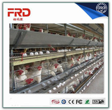 Hot Selling Automatic Chicken Layer Cage