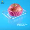 Bio-degradable blister transparent disposable plastic fruit tray SGL-1410