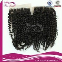 Hot Selling New Arrival Shedding Free Tangle Free 6A Top Grade Cheap Kinky Curly Closure Free Shipping Accept Paypal