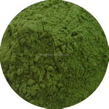 Mejor calidad clorofila, mejor precio clorofila polvo