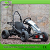 Top Quality Cheap 500W Electric Mini Buggy for Sale