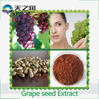 Pure Natural High Quality Grape Seed Extract, Grape Seed Extract Powder, Organic Grape Seed Extract /Proanthocyanidins