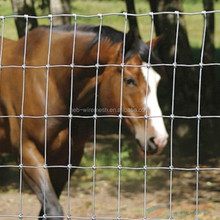 1.5m Field Fence,Grassland Fence/horse Fence,Cattle Farm Fencing Product