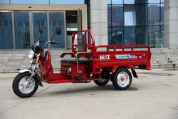 China popular 3 wheel cargo motor tricycle