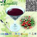 nomes de marca suco lingonberry