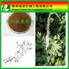 High Quality Black Cohosh Extract Triterpenoid Saponis/triterpenoides Saponis/High Quality Gotu Kola Extract