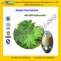 GMP Certified Manufacturer Supply Natural Sweet Tea Extract