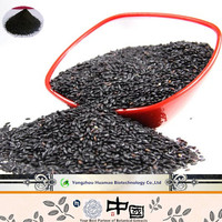 New Health Supplements Black Glutinous Rice Extract