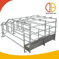 Livestock Equipment Pig Gestation Stall