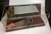 high quality perspex snake terrarium pet reptile cage
