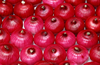 /product-gs/2015-fresh-chinese-onion-in-the-lowest-price-for-export-60288872888.html