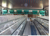 battery chicken cage/layer chicken battery cage/chicken layer cage for sale