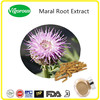 10:1 China Manufacturer Natural Maral Root Extract / Rhaponticum Carthamoides Extract