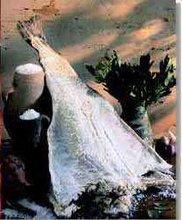 Bacalhau/Codfish/gadus Morhua/ Gadus macrocephalus