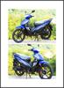 Super motors/kids petrol bikes/motorcycle with engine 50cc/70cc/90cc/110cc/125cc