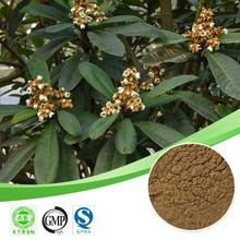 Hot sale Loquat leaf extract/Ursolic acid 98%/Ursolic acid powder plant extract