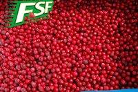 wholesale price of IQF/Frozen bulk red berry , frozen Lingonberries 2015 new crop