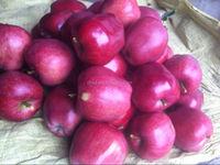 price of organic fruits red star apple,apple price