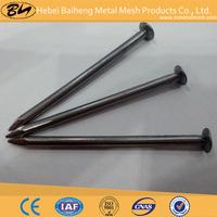 Common iron nails/Iron horseshoe nails