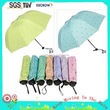 Fashionable most popular super mini packet folding umbrella